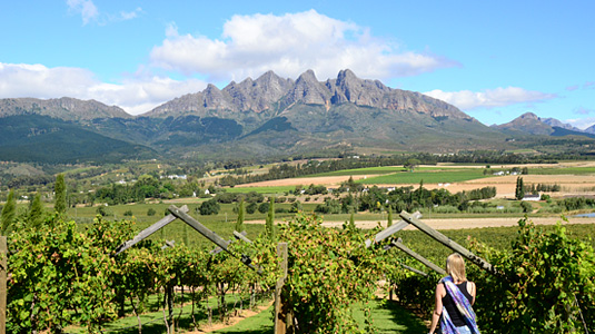 Val du Charron Wine Farm View