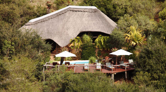 Lalibela Game Reserve Eastern Cape South Africa