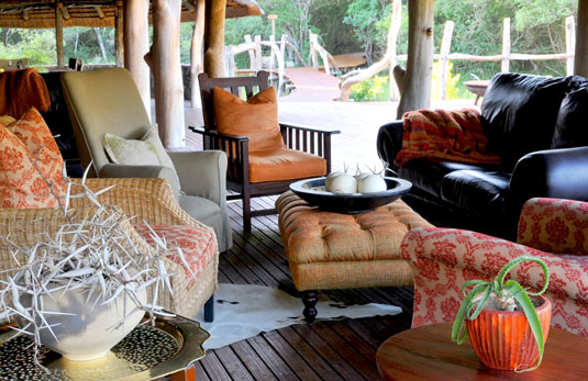Forest Camp - Sibuya Game Reserve